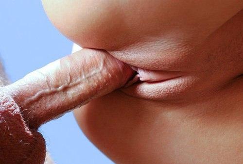 Бабы с роскошными телами позволяют натягивать себя без гандона секс фото