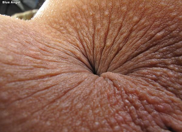позерша секс картинки