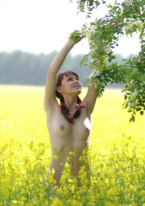 Красотка На Проводит Время На Лужайке Голышом Порно И Секс Фото Девушек С Косичками