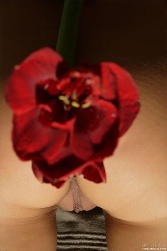 Мария валяется в обнимку с красным цветком