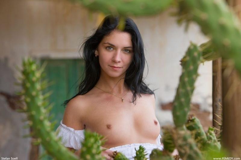 Фива уселась обнаженной около кактусов