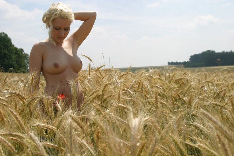 Голая красавица бродит по пшеничному полю