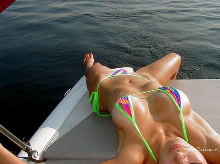 Бестии загорают на пляже в купальниках