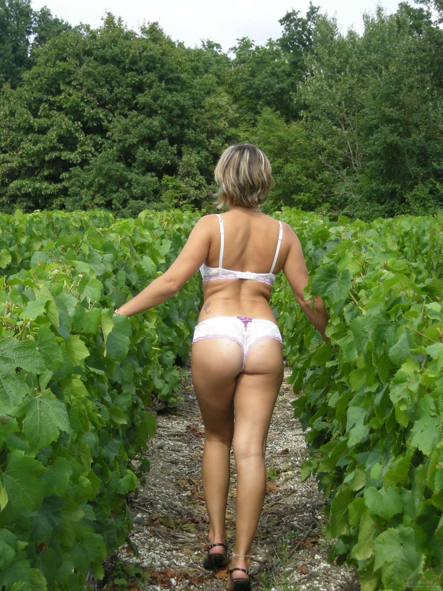 Барышня гуляет по винограднику в белом белье