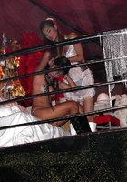 Азиатки в нижнем белье двигаются вокруг пилона в стриптиз-клубе 7 фотография