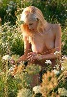 Худая блондинка с торчащими сиськами гуляет голышом по поляне 1 фотография