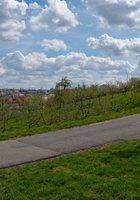 Стройная брюнетка гуляет обнаженной среди цветущих деревьев 8 фотография